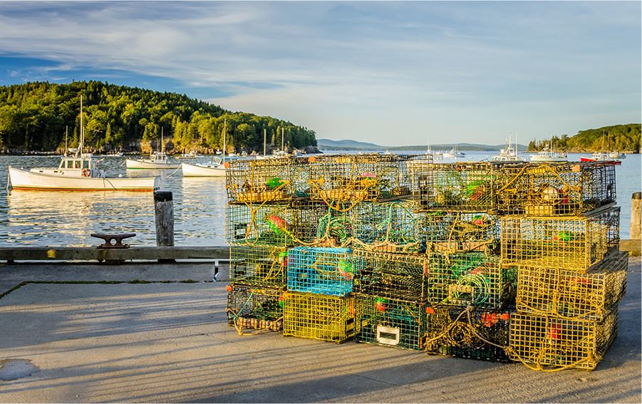 Group of lobster cages waiting to be loaded on boat